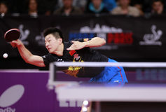MA Long ( CHN ) Royalty Free Stock Images