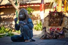 Małpa i Barong Fotografia Royalty Free