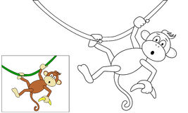 Małpa z bananem Obraz Royalty Free