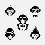 Małpi logowie Obraz Stock