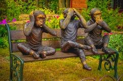 Małpi przyjaciele Obrazy Stock