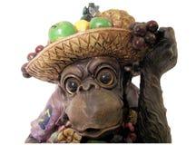 małpi strona obraz stock