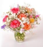 ma piekne róże Obraz Stock