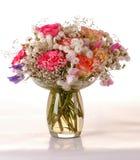 ma piekne róże Zdjęcia Stock
