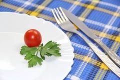 Mała porcja jedzenie Fotografia Stock