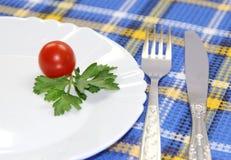 Mała porcja warzywa na talerzu Zdjęcie Royalty Free