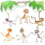 Małpuje wektoru set Ilustracja Wektor