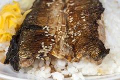 Ma ryba Piec na grillu ryba Fotografia Royalty Free