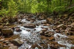 Mała rzeka nazwany Ilse w Harz Niemcy Obrazy Stock