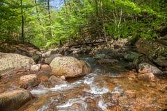 Mała rzeka nazwany Ilse w Harz Niemcy Fotografia Royalty Free