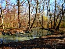 Mała rzeka w rezerwie Obrazy Stock