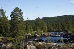 Mała rzeka z drewnianym mostem i las w backgrou Zdjęcie Stock