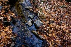 mała rzeki Obraz Royalty Free