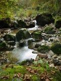 Mała rzeki kaskada fotografia royalty free