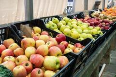 Ma??s org?nicas frescas em caixas no mercado dos fazendeiros imagens de stock royalty free