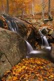 Mała siklawa w jesieni. Montseny, Hiszpania. Fotografia Stock