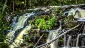 Mała siklawa w zielonym lesie Fotografia Royalty Free