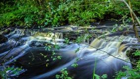 Mała siklawa w zielonym lesie Zdjęcie Stock