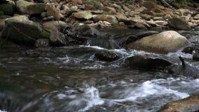 Mała szybka rzeka zbiory wideo