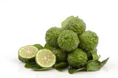 Ma tajlandzki imię, kafr pijawka lub wapno wapno lub Mauritius lub. Papeda lub bergamota (cytrusa hystrix DC.) Rutaceae. Obrazy Royalty Free