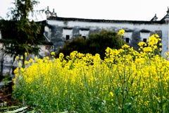 Ma Tau wall dwellings-Wuyuan, Jiangxi, China Stock Photo