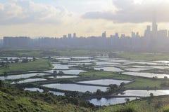 Ma Tso Long bij Noordoostelijke Nieuwe Gebieden, Hong Kong Stock Afbeeldingen