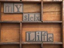 Ma vie sexuelle dans les lettres en bois, concept de vintage Images stock