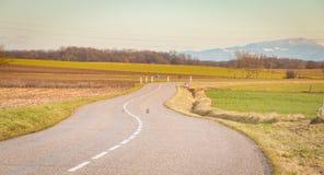 Mała wiejska droga blisko Vosges gór fotografia stock