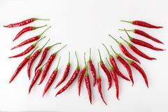 Mały czerwony chili zdjęcie stock