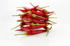 Mały czerwony chili zdjęcia royalty free
