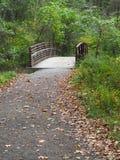 Mały drewniany odprowadzenie most obrazy stock