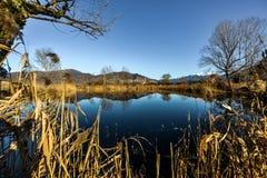 Mały jezioro obraz stock