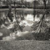 Mały jezioro Fotografia Royalty Free