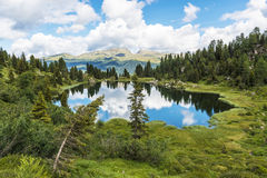 Mały jezioro Colbricon, dolomity Fotografia Stock