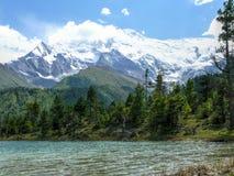 Mały jezioro pod Annapurna 2, Nepal Fotografia Royalty Free