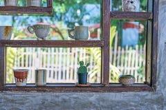 Mały kaktus w kwiatu garnku Zdjęcie Royalty Free