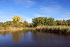mały krajobrazu jeziora. Zdjęcia Stock