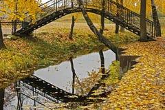 Mały most z odbiciem w wodzie w parku Zdjęcie Stock