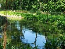 mały nad jezioro obraz stock