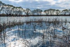 mały nad jezioro Fotografia Stock