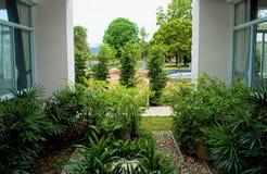 mały ogród Fotografia Stock