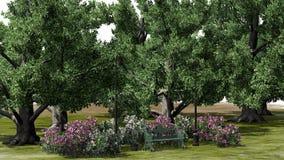 Mały park z krzakami i drzewami Obraz Stock