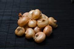 Mały rozsypisko cebule na ciemnym tle obrazy stock