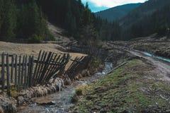 Mały strumyk przeciw staremu drewnianemu ogrodzeniu w lesie, Zdjęcia Royalty Free