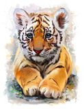 Mały tygrysi akwarela obraz Zdjęcia Stock