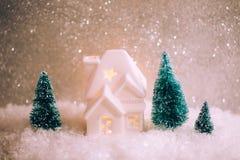 Mały zabawka dom z trzy sosnami Zdjęcia Royalty Free