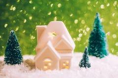 Mały zabawka dom z trzy sosnami Fotografia Stock