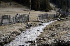 Mała zatoczka przeciw staremu drewnianemu ogrodzeniu w lesie, Zdjęcia Royalty Free