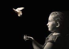 Mała dziewczynka uwalnia biel gołąbki od ręk Zdjęcia Royalty Free