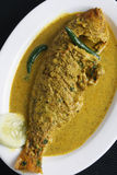 Maacher jhol - a Bengali Fish Curry. Macher jhol is a light fish or vegetable stew seasoned with ground spices like ginger, fried cumin powder, coriander, chilli Stock Photo